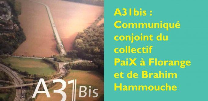 A31bis