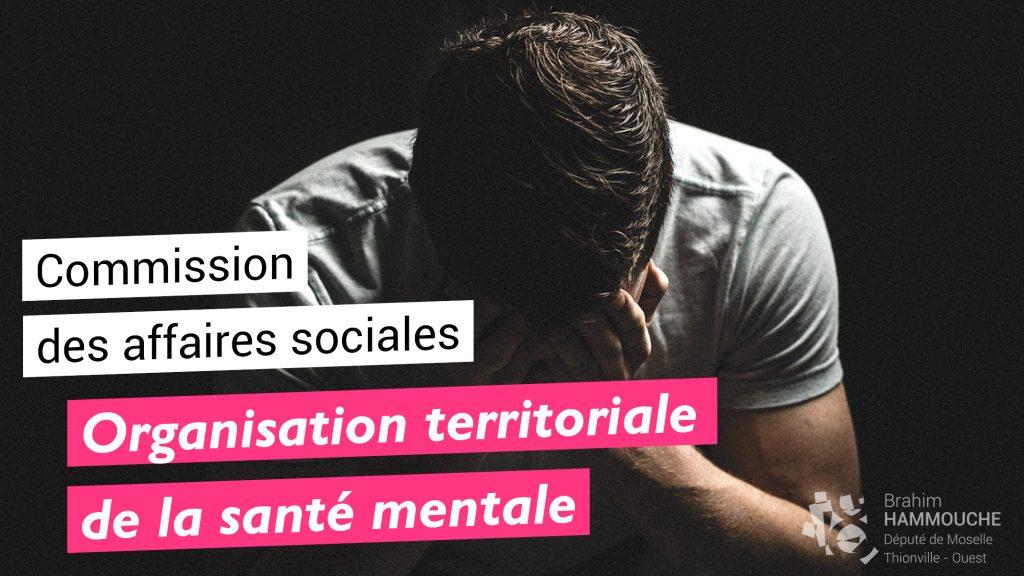 Organisation territoriale de la santé mentale